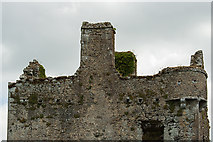 S0429 : Castles of Munster: Knockgraffon, Tipperary - revisited (3) by Mike Searle