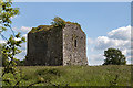 R2842 : Castles of Munster: Ballyegnybeg, Limerick (2) by Mike Searle