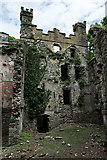 S5508 : Castles of Munster: Butlerstown, Waterford (3) by Mike Searle
