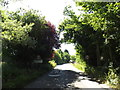 TM0771 : Entering Gislingham on Thornham Road by Adrian Cable