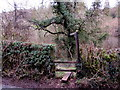 SO5207 : Stile to a public footpath, Whitebrook by Jaggery