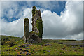 M3201 : Castles of Munster: Cappagh, Clare (2) by Mike Searle
