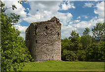 S7235 : Castles of Leinster: Coolhill, Kilkenny (1) by Mike Searle