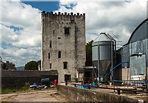 S4421 : Castles of Leinster: Tibberaghny, Kilkenny (2) by Mike Searle