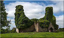 S0084 : Ballintemple House, Ballintemple, Offaly (2) by Mike Searle