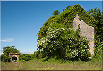 X0997 : Jacobean house, Drumroe Lower, Waterford by Mike Searle
