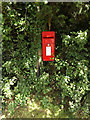 TG1823 : Little London Postbox by Geographer