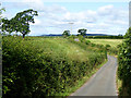 NY6326 : Priest Lane, Kirkby Thore by Oliver Dixon
