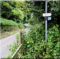 SN3907 : Wales Coast Path sign and cycle route sign near Kidwelly by Jaggery