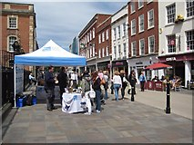 SO8554 : RSPB stand on Worcester High Street by Philip Halling