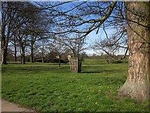 SE3953 : Tree guard, Ribston Park by Derek Harper
