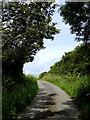 SS2320 : Lane to Welcombe, Devon by Roger  Kidd