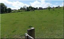 ST8744 : Smallbrook Meadows, Warminster by Jaggery