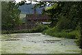 TQ0648 : Sherbourne Pond by Alan Hunt
