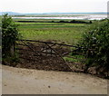 SN3907 : Old field gate west of Kidwelly by Jaggery
