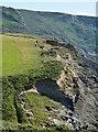 SX1395 : Coastal erosion at Little Strand near Crackington Haven, Cornwall by Edmund Shaw