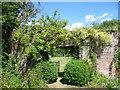 TQ7942 : In the garden at Iden Croft Herbs by Marathon