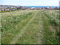 TQ3602 : Looking back to Rottingdean and the sea by Marathon