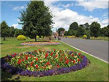 SJ6855 : Queen's Park: flowerbeds by Stephen Craven