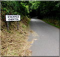 SR9897 : Northern boundary of Stackpole Cheriton by Jaggery