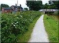 SJ8056 : Cherry Lane Bridge No 139 by Mat Fascione