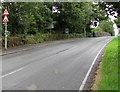 SN0100 : Humpback bridge and road narrows signs, Lamphey by Jaggery