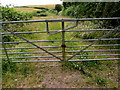 SS0096 : Field gate, West Trewent by Jaggery