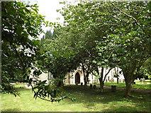 TM1469 : All Saints Church, Thorndon by Geographer
