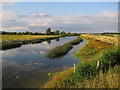 TL3974 : New Bedford River by Hugh Venables