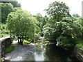 SH7507 : Afon Dulas at Abercorris by Christine Johnstone