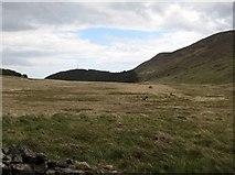 J3431 : View east across the Tullybranigan Bog by Eric Jones