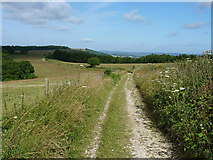 SU8417 : South Downs Way below Linch Ball by Richard Law