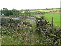 SE0322 : Gap in wall and field gate on Sowerby Bridge FP112 (Link E) by Humphrey Bolton