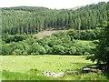SH7507 : Area of felled woodland, Coed Fron felin by Christine Johnstone