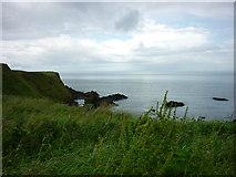 C9444 : Runkerry Head, Giant's Causeway by Carroll Pierce