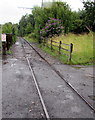 SO9491 : Do not walk on the tramway in the Black Country Living Museum, Dudley by Jaggery