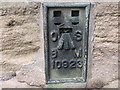 NZ2756 : Ordnance Survey Flush Bracket 10923 by Peter Wood