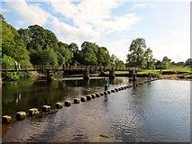 SE0754 : Cross  the  River  Wharfe  take  your  choice by Martin Dawes