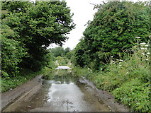 TF8114 : Overflowing River Nar in Bailey Street Castle Acre by Adrian S Pye