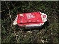 SX8463 : Litter near Weekaborough Oak Cross by Derek Harper