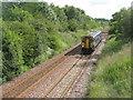 NT0263 : Train for Glasgow by M J Richardson