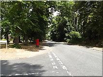 TM1745 : Tuddenham Road, Ipswich by Adrian Cable