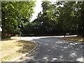 TM1745 : Borrowdale Avenue, Ipswich by Adrian Cable