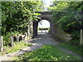 NO4731 : Former railway bridge, Broughty Ferry Nature Reserve by PAUL FARMER