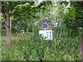 NT2871 : Cairntows Park Community Wood by PAUL FARMER