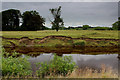 SE4368 : River Swale at The Holmes by Chris Heaton