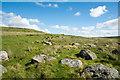 NY8713 : Embedded boulders beside bridleway by Trevor Littlewood