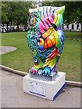 SP0787 : Clash Owl by Gordon Griffiths