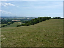 TQ1412 : Near the top of Chanctonbury Hill by Richard Law