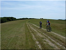TQ1411 : Riding off Chanctonbury Hill by Richard Law